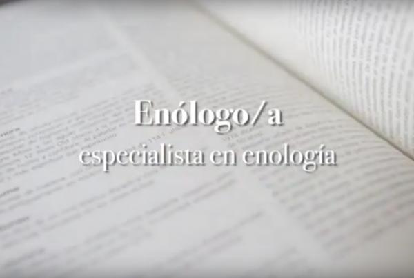 Enólogo:a