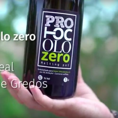 WS Protocolo Zero