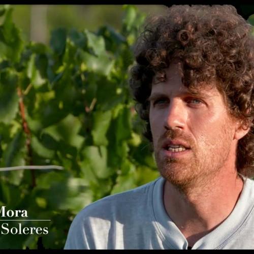 Clot de les Soleres